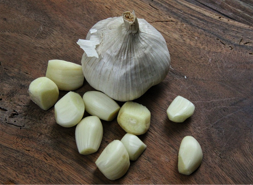 The Incredible Benefits of Garlic